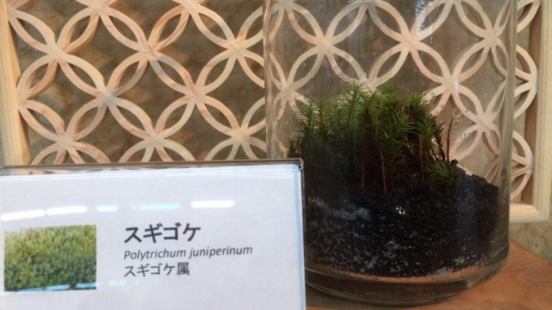 広島ビジネスフェア